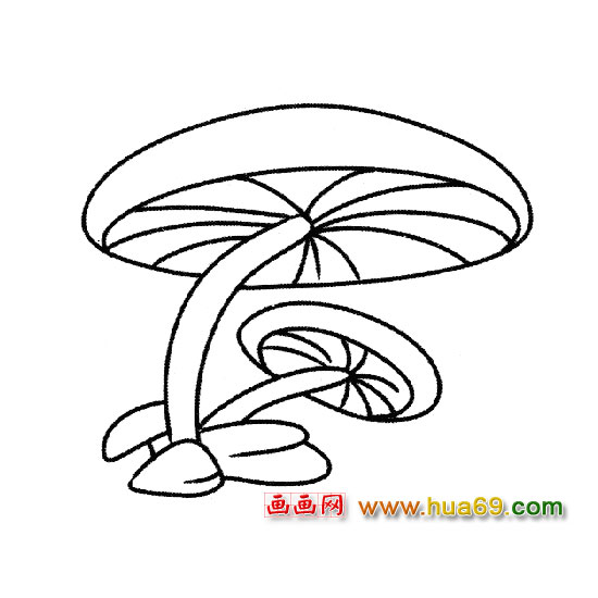 蘑菇房子简笔画 - 房子装修设计效果图