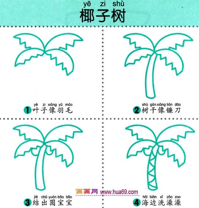 儿童简笔画:四步画椰子树图解教程